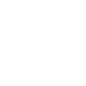Honda approved training school
